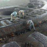 road construction, gulli, miniature figures